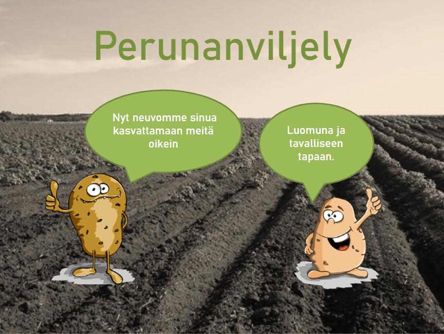 Kansikuva PDF-esitykselle Perunanviljely